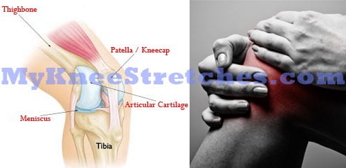 pain behind knee diagnosis and home care mykneestretches com